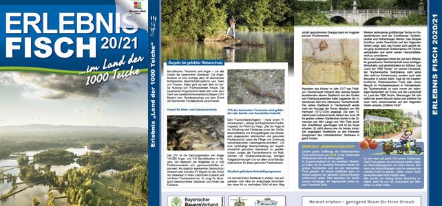 Broschüre Erlebnis Fisch 2020/21